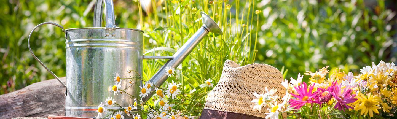 Busreise Eventreise Blumen und Gärten