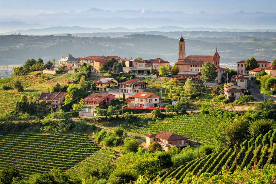 Flugreise Italien - Weinberg Toskana